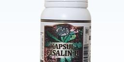 Fisalin B