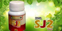 Kapsul-SJ-2