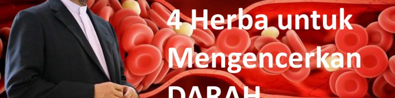 4 Herba untuk Mengencerkan DARAH