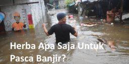 Herba Pasca Banjir