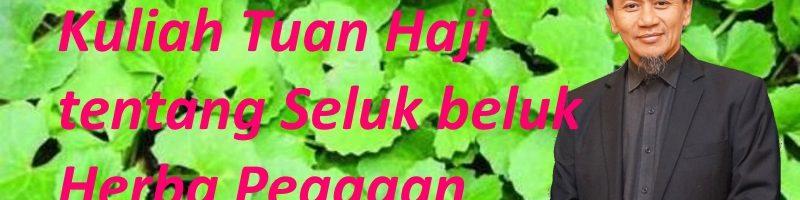 Kuliah Tuan Haji tentang Pegagan