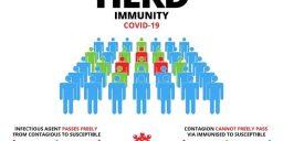 Pandangan Thibunnabawi thd HERD Immunity