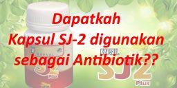 Dapatkah Kapsul SJ-2 digunakan sebagai antibiotik?